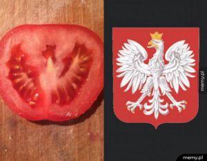Polaska