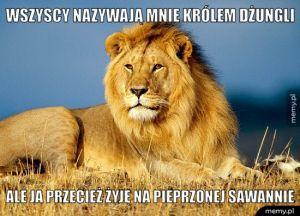Król dżungli