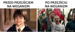 Weganizm