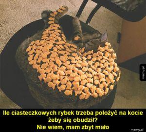 Śpioszek