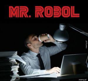 Mr. Robol