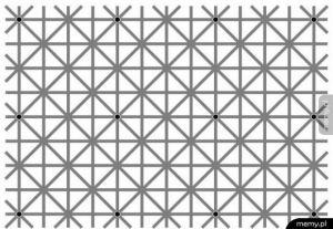 Na obrazu jest 12 czarnych kropek ale Twój mózg nie pozwoli zobaczyć Ci wszystkich na raz
