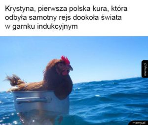 Owacje pls