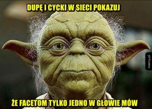 Yoda prawi