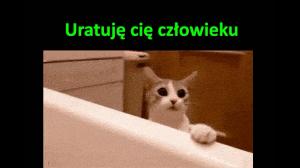Koteł ratunkowy
