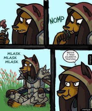 Logika Skyrim